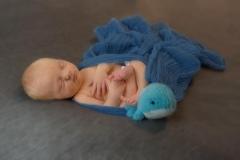 Eden's Newborn Photography Shoot in Rugby 8277