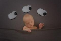 Eden's Newborn Photography Shoot in Rugby 8305