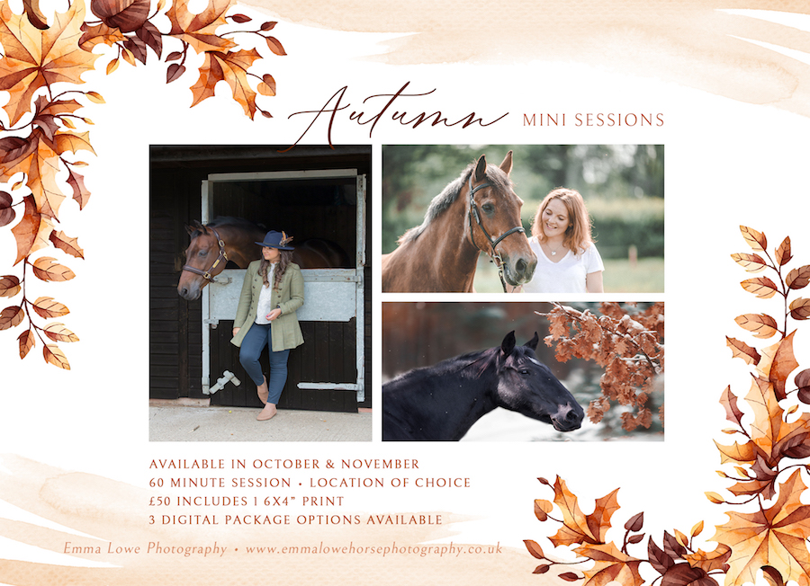 Autumn Mini Sessions Horse Photography in Rugby