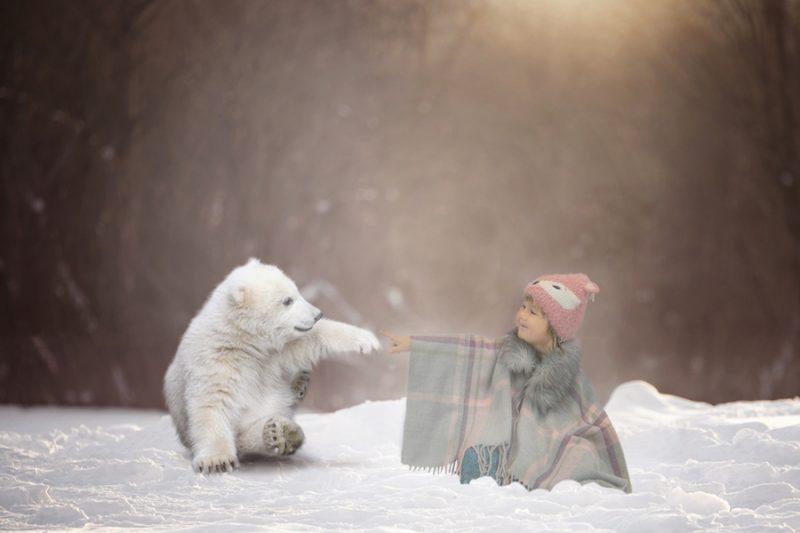 Rose with her Polar Bear christmas mini shoot Rugby photographer Emma Lowe Photography BLOG